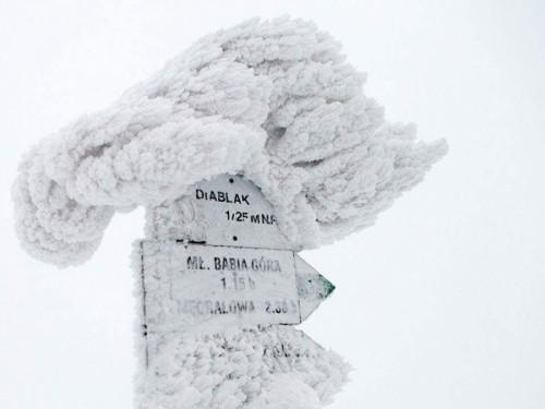 Śmierć podczas treningu. Maratończyk ze Skawinek zginął na Babiej...