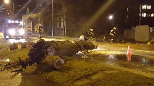 Gwałtowna burza nad powiatem. Powalone drzewa w Wadowicach, piorun...