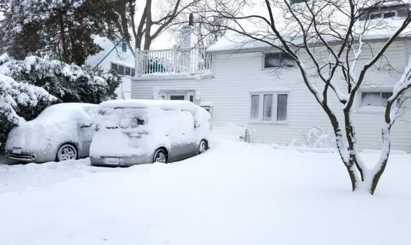 Niestety, mróz i śnieg zbliżają się do nas wielkimi krokami…