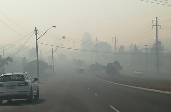 Koszmar australijskich pożarów oczami wadowiczanki mieszkającej...
