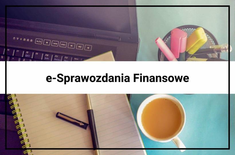 E-Sprawozdania – nowe obowiązki dla księgowych