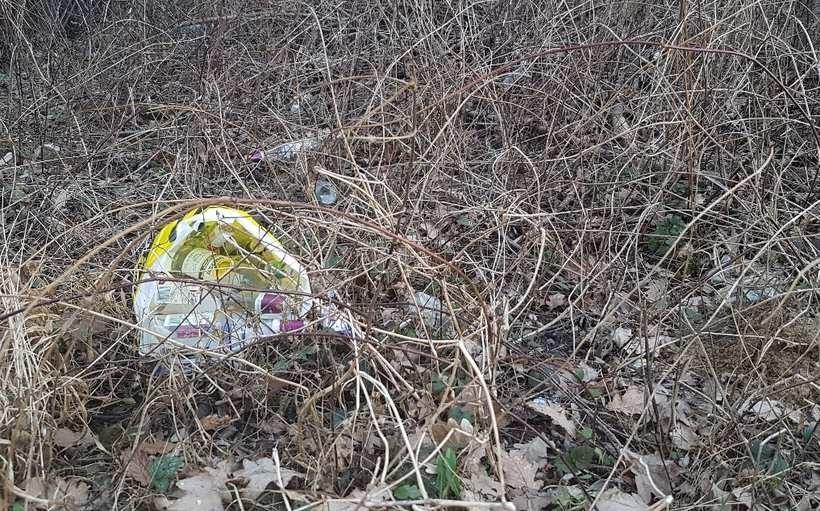 Śmieci w zagajniku w Choczni