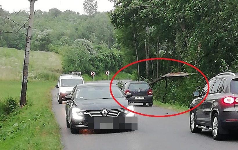 Drzewo przewróciło się na drogę w Woźnikach