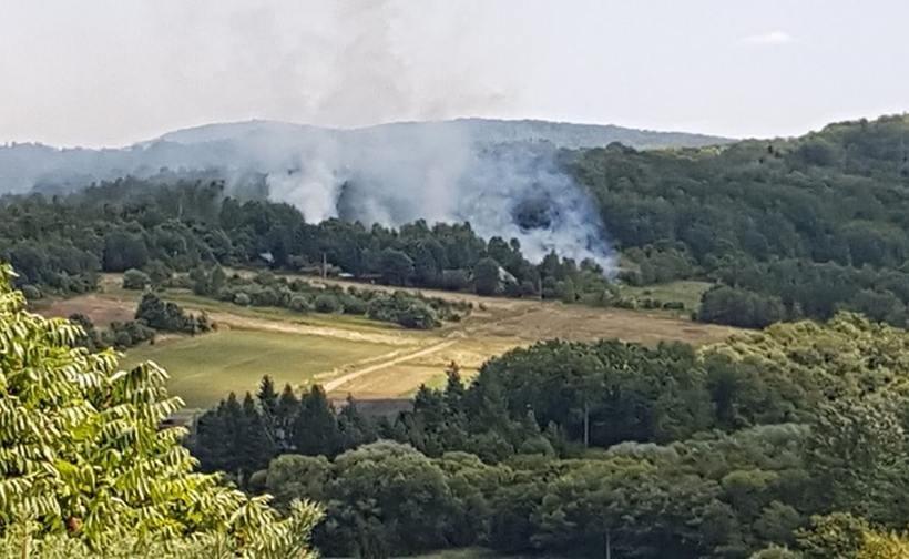 Pożar w Zarzycach Małych