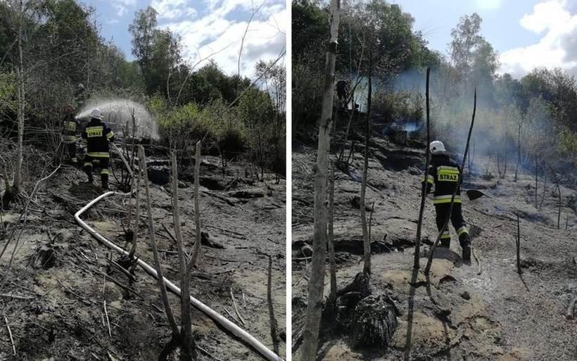 Na brzegu zbiornika zapaliły się gałęzie i... śmieci. Strażacy jechali do akcji po dnie