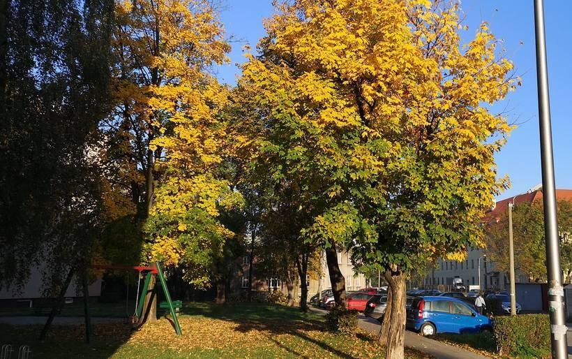 Wykorzystajmy piękne dni jesieni. Od przyszłego tygodnia ochłodzenie