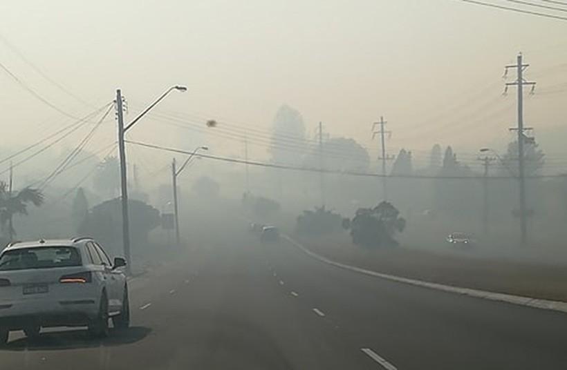 Fatalna jakość powietrza to teraz norma w Sydney