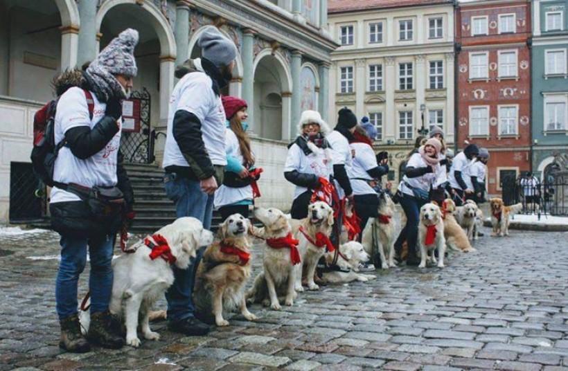 Pierwszy taki marsz psiaków w Wadowicach. Z jakiej okazji?