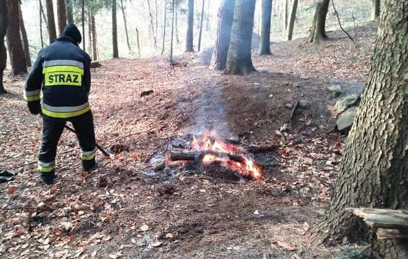 Płonie ognisko w lesie. Strażacy z Lanckorony postawieni na baczność