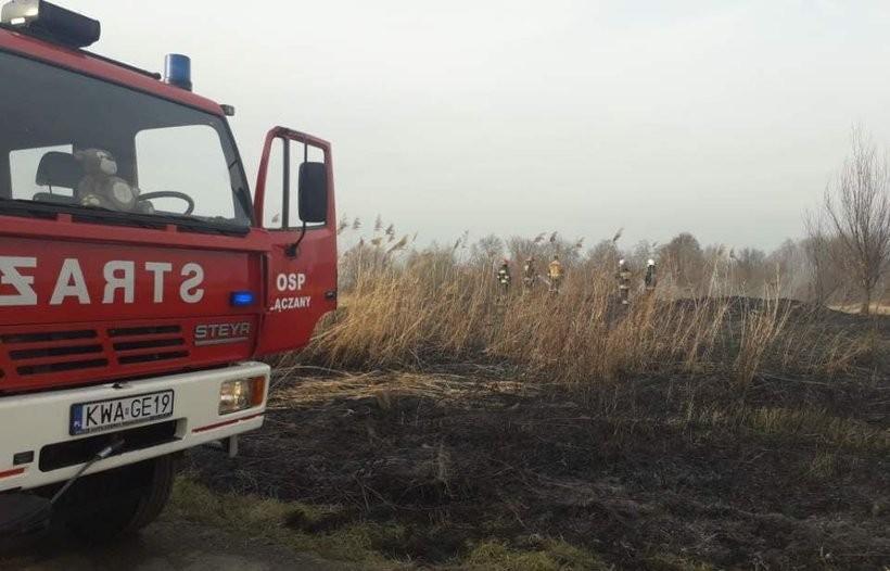 Pożar nieużytków w Kossowej