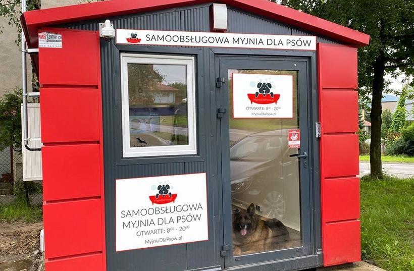 Samoobsługowa myjnia dla psów w Wadowicach