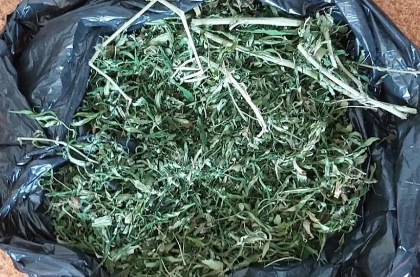Nie udało mu się ukryć marihuany przed policją. 31-latek odpowie za 440 gramów