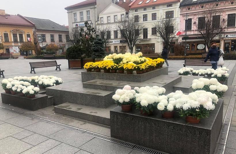 W Wadowicach 74 sztuk chryzantem ustawiono na fontannie na rynku