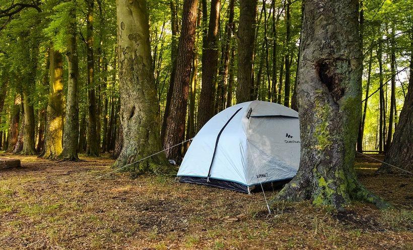 """Nocowanie w lasach """"na dziko"""" możliwe od 1 maja? Nadleśnictwo Andrychów: """"Czekamy na wytyczne"""""""
