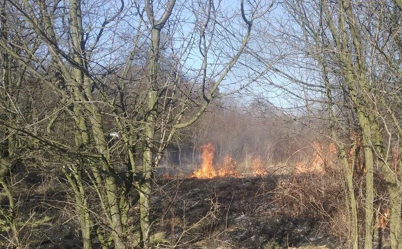 Pożar w gminie Brzeźnica