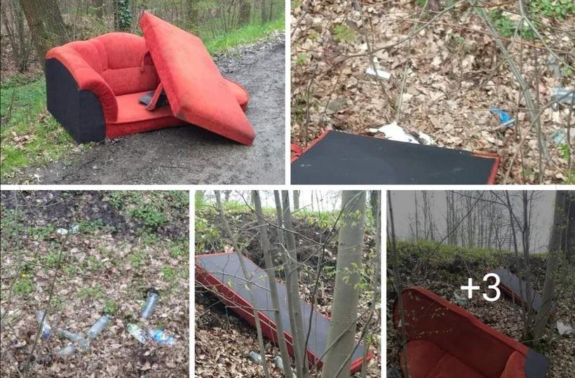 Wielkie gabaryty i posegregowane śmieci porzucone w lesie! Co trzeba mieć w głowie?