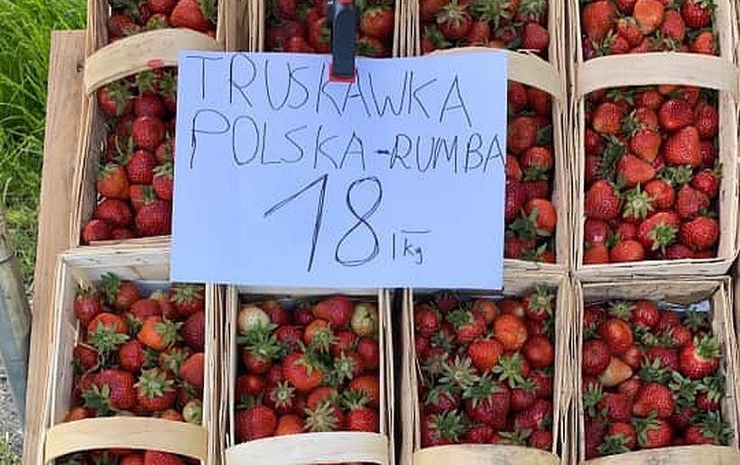 Ceny truskawek na lokalnym rynku już spadają. Jest ich dużo, jest w czym wybierać