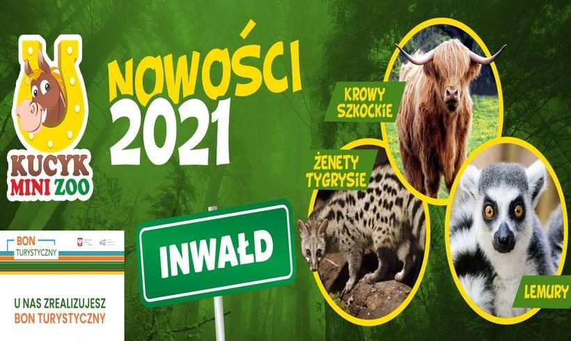 Mini Zoo w Inwałdzie zaprasza!