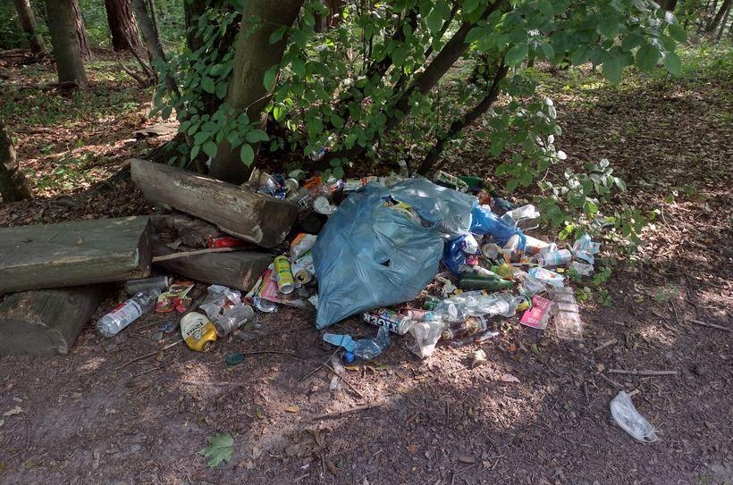 Las to nie miejsce na śmieci! Zabierajcie ze sobą odpady po wycieczkach