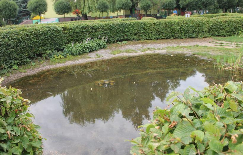 Oczko wodne przy bloku nr 38 na os. Lenartowicza w Andrychowie