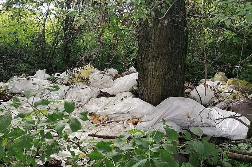 Taniej wyrzuć do lasu niż oddać na wysypisko? Za 50 worków dzikich śmieci mandat 500 zł