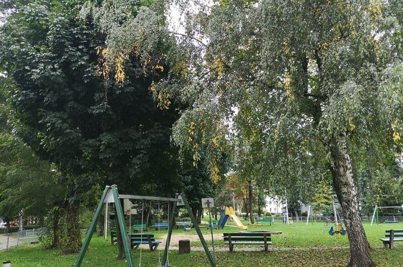 Wrzesień pięknie, choć zimno się pożegnał. Na kilka dni zrobi się naprawdę ładnie