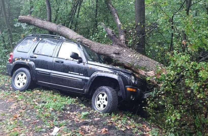 Drzewo zmiażdżyło terenówkę. Aż trudno uwierzyć, że nikt nie został ranny