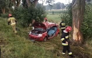 Wypadek we Frydrychowicach
