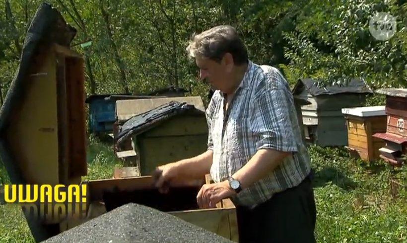 Mieczysław Jamróz opiekuje się pszczołami w Jaszczurowej