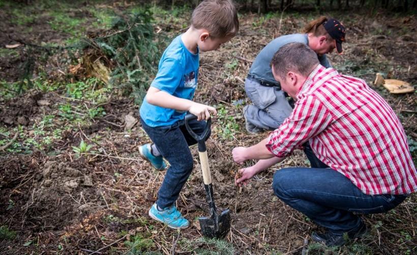 W Kalwarii znaleźli sposób na SMOG. Sadzą las, by oczyszczał zatrute powietrze