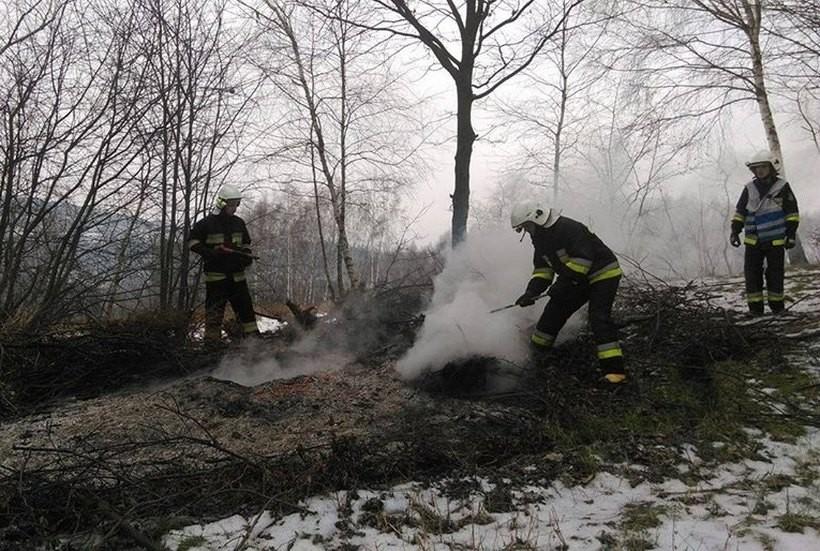 Strażacy ugasili pożar w lesie w Zebrzydowicach