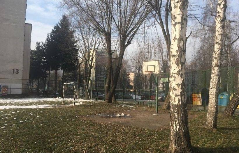 W tym miejscu mogą powstać nowe miejsca parkingowe. Obejdzie się bez wycinki tych starych drzew?