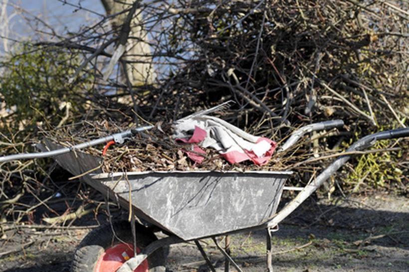 Dzielnicowi z Wadowic ratowali kobietę ranną przy wycince drzew