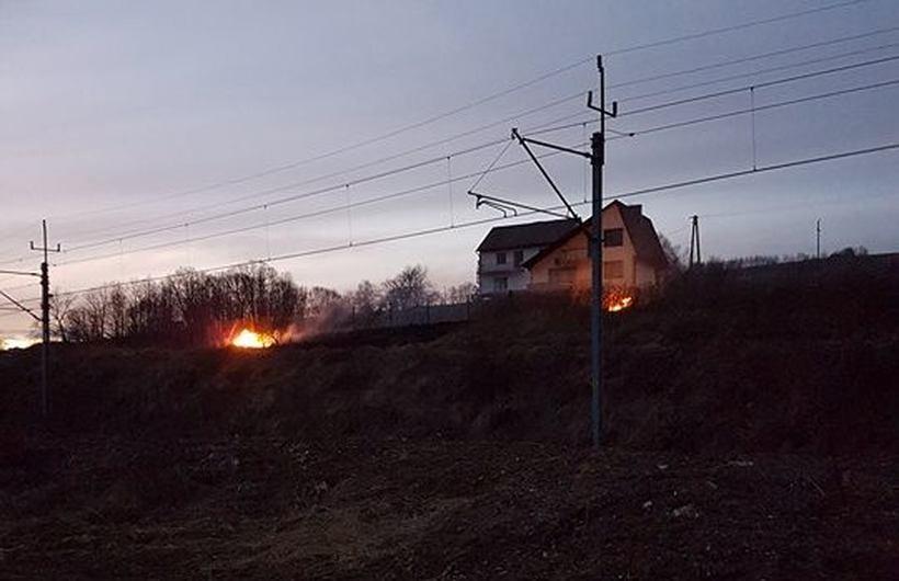 Pożar trawy w Stryszowie