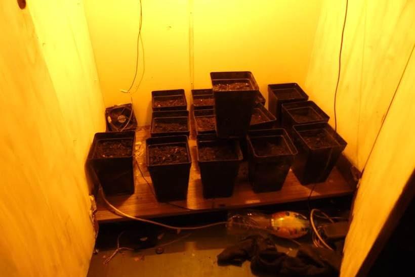 Plantator z Andrychowa uprawiał marihuanę w... swojej szafie. Ma też coś więcej na sumieniu