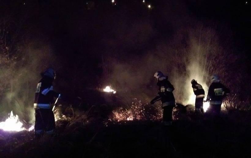 Strażacy przerażeni ilością interwencji związanych z wypalaniem traw