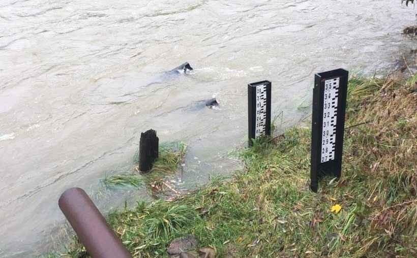 """Poziom wody w Skawie w Wadowicach osiąga tak zwane """"stany wysokie"""""""