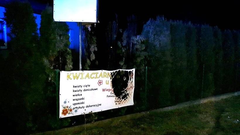 W Wieprzu na ulicy Beskidzkiej od fajerwerków zapaliły się tuje