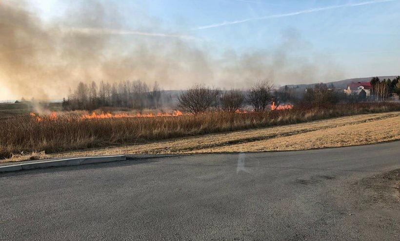 Pożar w Łączanach w okolicach mostu na Wiśle