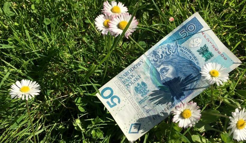 Znalazłeś 50 złotych? Nie musisz już oddawać staroście