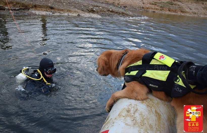 Psy i ich właściciele trenowali w Świnnej Porębie