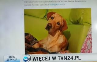 Adi ciągle poszukiwany. Do pomocy włączył się TVN24