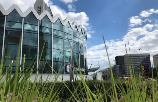 Bycie eko się opłaca – największy bank w Polsce wspiera transformację energetyczną kraju