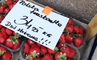 Cena truskawek w Wadowicach w sobotę (15.05)