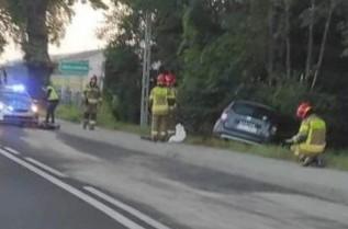 Fatalny początek dnia dla kierowcy osobówki. Przed auto wtargnął dzik