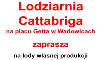 Lodziarnia Cattabriga w Wadowicach zaprasza na lody. Teraz promocja