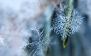 Przygotowani na nadejście zimy? Przed nami pierwsze mroźne dni w tym sezonie!