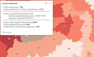 Trzecia fala koronawirusa. Znów wzrosty zakażeń w Polsce i w wadowickim