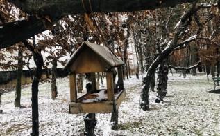 """W Wadowicach pierwszy skromny śnieg. Czy to już początek """"zimy trzydziestolecia""""?"""